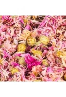 Kornblumenblüten pink