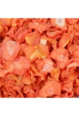 Karotten-Scheiben