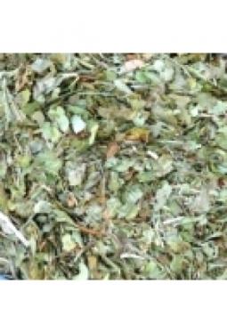 Heidelbeerblätter geschnitten